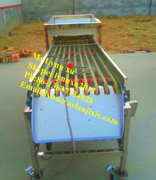 Vegetable sorting machine\/onion sorting machine\/olive sorting machine for sale