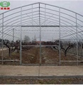 Agricultural used greenhouse frame for sale for vegetable