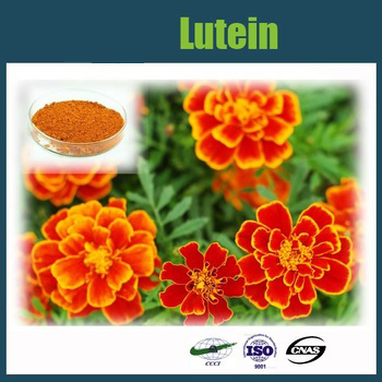 Hot Sales Lutein Lowest Price by HUISUN!GMP factory!!