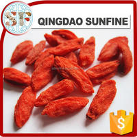 2015 new organic goji berry Chinese medlar fruits for sale