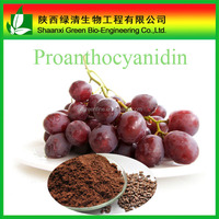 100% Natural Grape Seed Extract Proanthocyanidins