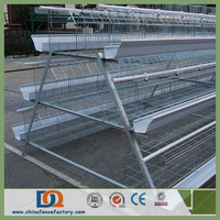 Stainless Steel Chicken Wire Mesh Poultry Layer Cage for Nigeria Farm