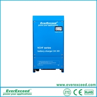2016 Hot EverExceed Newly Developed high efficiency 12v 24v automatic lead acid battery charger,solar battery charger