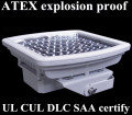 60w led explosion-proof light with ATEX UL DLC
