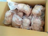 HALAL FROZEN WHOLE CHICKEN FOR EXPORT VIETNAM AND HK PORTS.