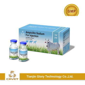 Veterinary medicine Ampicillin Sodium powder for Injection0.5g 1g 2g