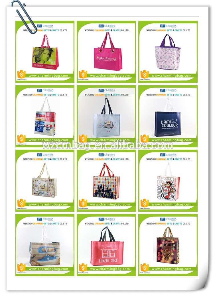 Eco Rpet Non Woven Shopping Bag for Promotion