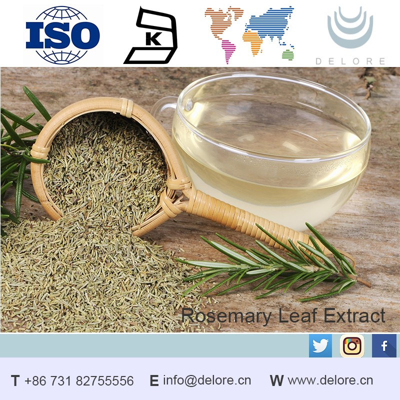 High quality Rosemary Extract Powder HPLC Ursolic Acid 50%