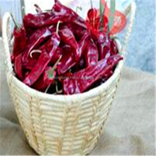 Low price spices factory dehydrated Yidu Chili the sweet paprika