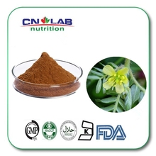 ISO manufacturer supply Total saponins 40-90% Tribulus Terrestris L. p.e.