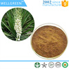 ISO factory supply Yucca Extract Powder 30% Saponins