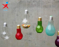 Hanging Painted Color Glass Bulbs Terrarium