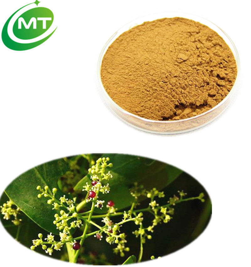 Hot sale natural clear breathing 20:1 Neem Bark Extract/Neem Bark Extract powder