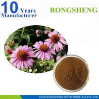 High Quality Natural Echinacea Herb P.E.