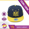 flat cheap embroidery custom design snapback cap hat