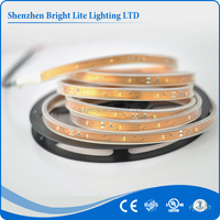 3014 Waterproof ip68 Warm White 30led UL certificate 12v led rope light