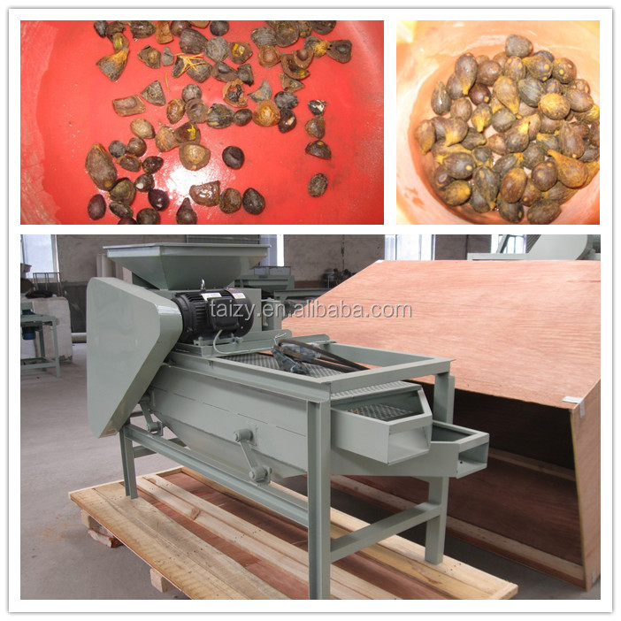 300~400kg/h almond crushing machine,almond shelling machine,almond cracker machine 0086 18703616827