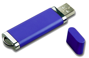 Bulk Lighter 1GB USB Flash Memory Plastic Pen Drive with Customized logo