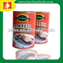Canned Mackerel Fish in Tomato Chili Sauce