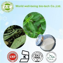 100% Natural Stevia Extract Powder --natural stevia rebaudiana extract/57817-89-7