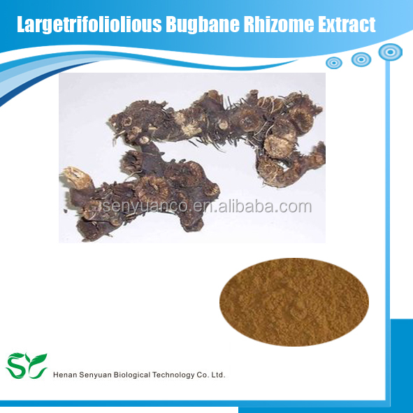 Natural Largetrifoliolious Bugbane Rhizome Extract