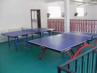 Table tennis court use pvc roll flooring