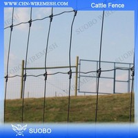 SUOBO Design Layer Chicken Cage For Kenya Poultry Farm Uganda Poultry Farm Automatic Chicken Layer Cage Rabbit Farming Cage
