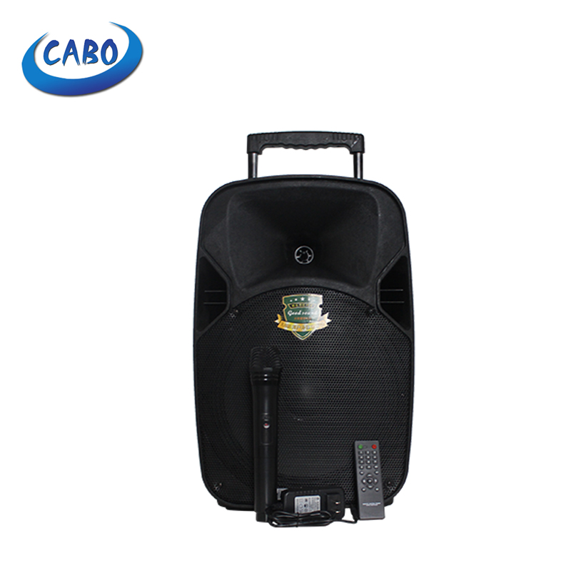 CABO wireless 8 inch professional trolley <strong>speaker</strong>