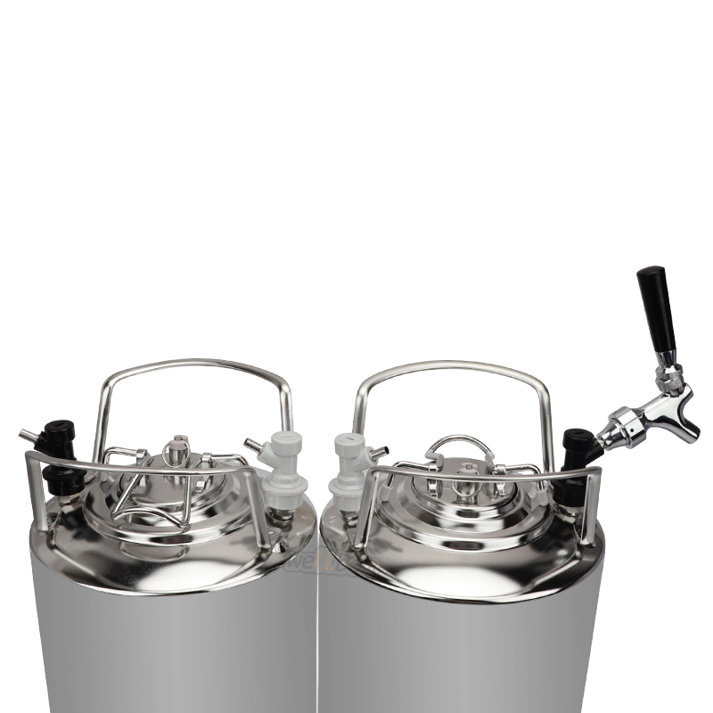 Hot selling Two 5 Gallon Cornelius Kegs System homebrew beer