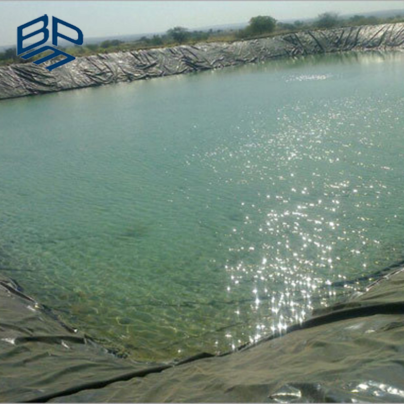 Barramundi HDPE Membrane In Fish Farm for Sale