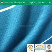 Hot sale new product Fashion Stripe Print Polyester Spandex Mesh Jersey Knitted Fabric for sports