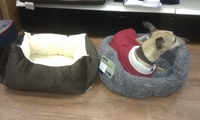 Heated pet bed for dog and small animals