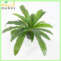 DECORATIVE artificial plants and trees