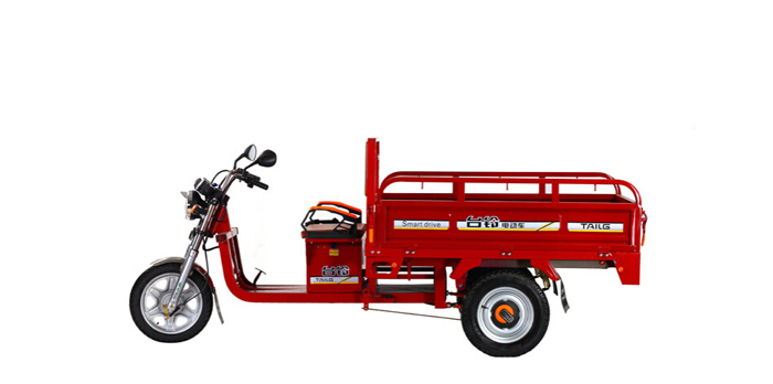 TAILG 2016 excellent quality cheap cargo electric tricycle