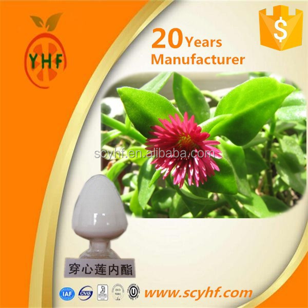 2015 china manufacturer wholesale solvent extraction plant Andrographis Paniculata Extract