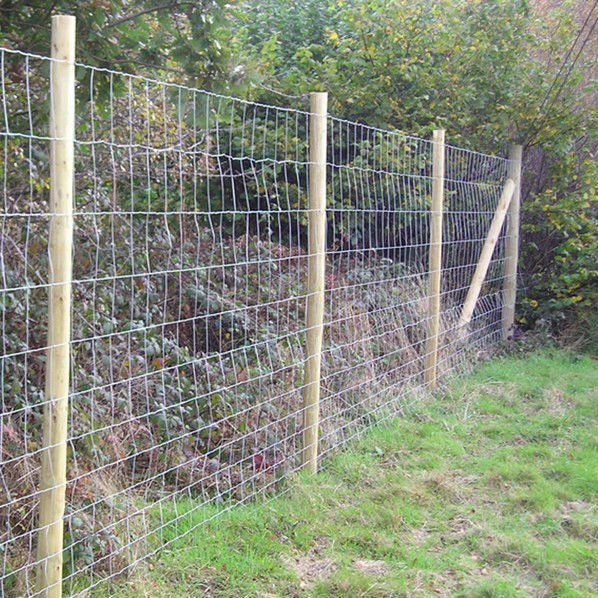 Woven Wire Mesh Sheep Goat Fence Factory Direct Export - Buy Wire ...