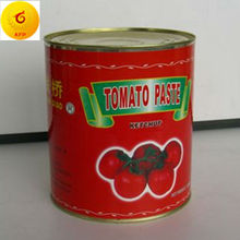 organic canned tomato paste in tomato sauce