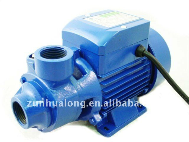 PKM60 END-SUCTION PERIPHERAL WATER PUMPS