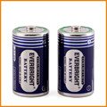 Heavy Duty With Brand Everbright UM-1 Battery