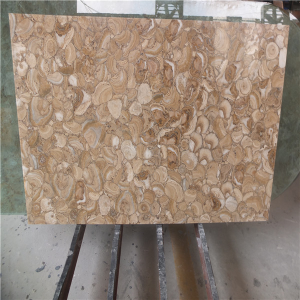 Brown Semi Precious Stone Petrified Wood Slab For Bathroom Top,Kitchen Top,Tabletop,Background