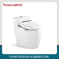 2015 best selling factory price automatic ceramic smart toilet lpf