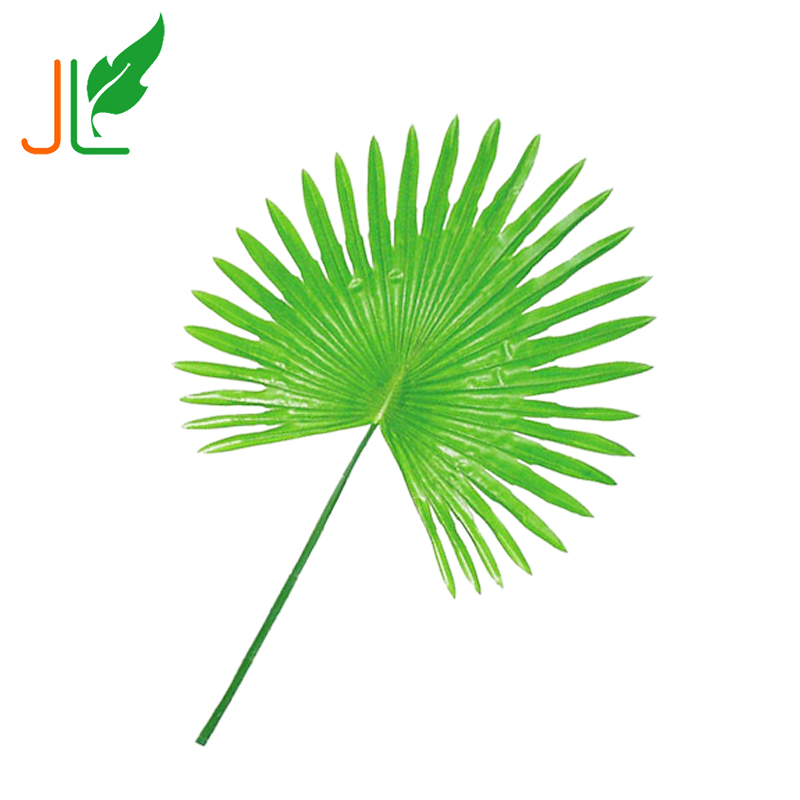 Light Green Dried Plastic Artificial Palm Tree Leaves