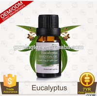 Private Label Eucalyptus Oil Organic Pure Essential Oil Type With Fresh Scent 10ml
