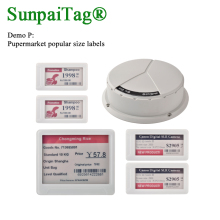 Supermarket ESL management electronic digital tag demo kit P with popular size label