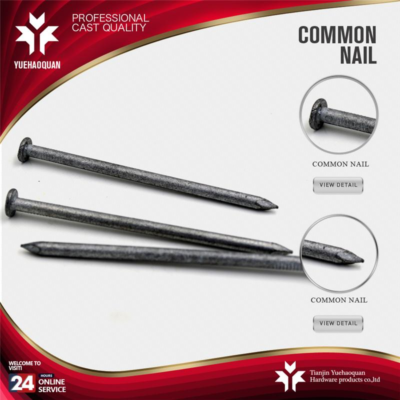 low price china polished common nail factory galvanized iron common nails