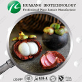 Manufacture Supply mangosteen powder / Mangosteen Extract