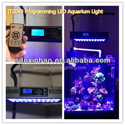 Evergrow best selling IT2040 55pcs*3W marine aquarium sunsun led light for fish tank