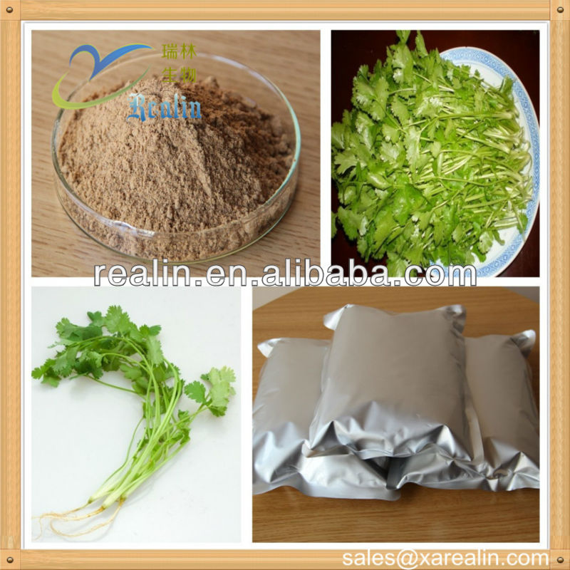 Manufacturer supply pure natural Coriander Herb Extract