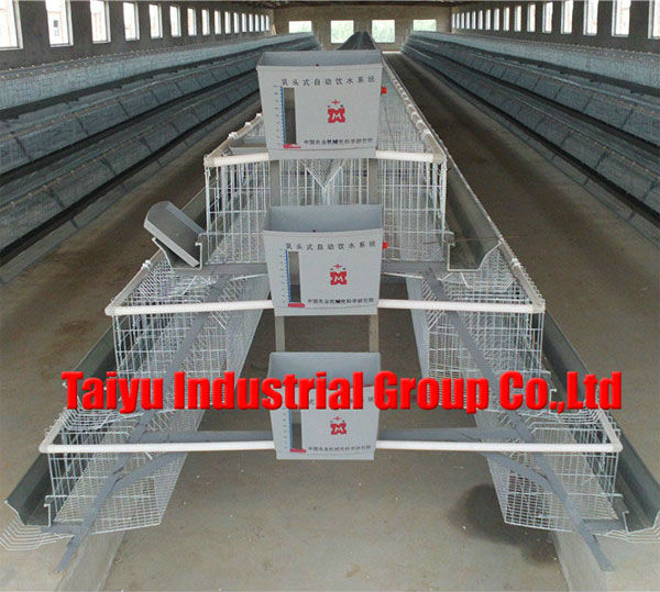 Multi-tier Chicken Cage( Professional Manufacturers welcome to visit our abroad farm sample )