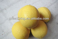 citrus fruit lemon for UK market